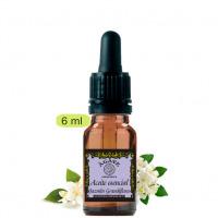 Jazmín Grandiflora. Aceite esencial Cosmética natural, Ágave